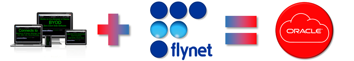Flynet Viewer TE