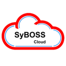 SyBOSS (Synthesis Business Operations Subscription Solution)